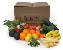 The-Big-Organic-Box